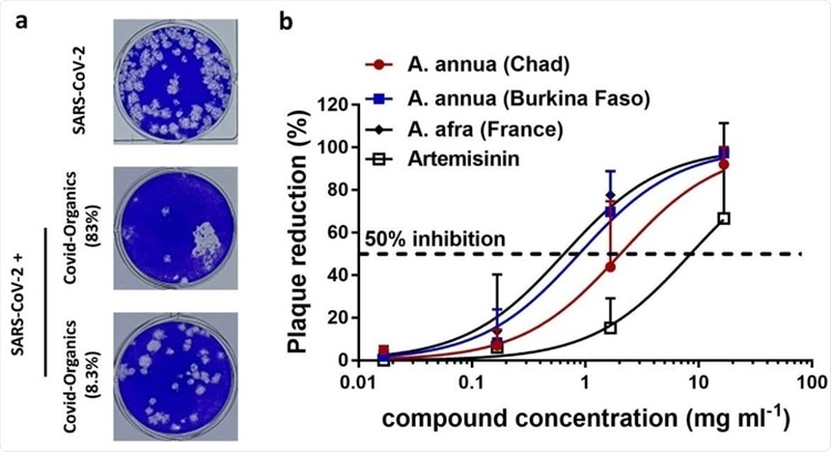 Артемизинин подавляет коронавирус COVID-19
