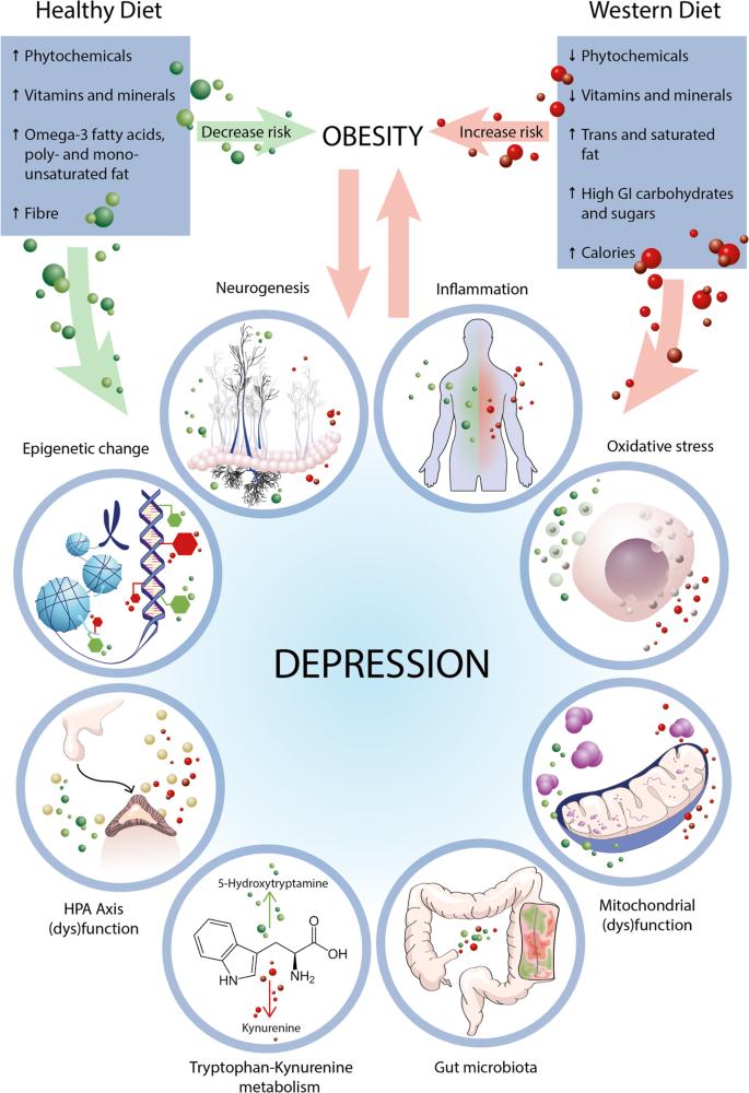 Депрессия уменьшается при здоровой диете