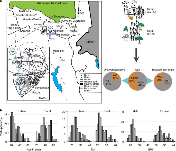 Отличия городских и сельских жителей в Танзании