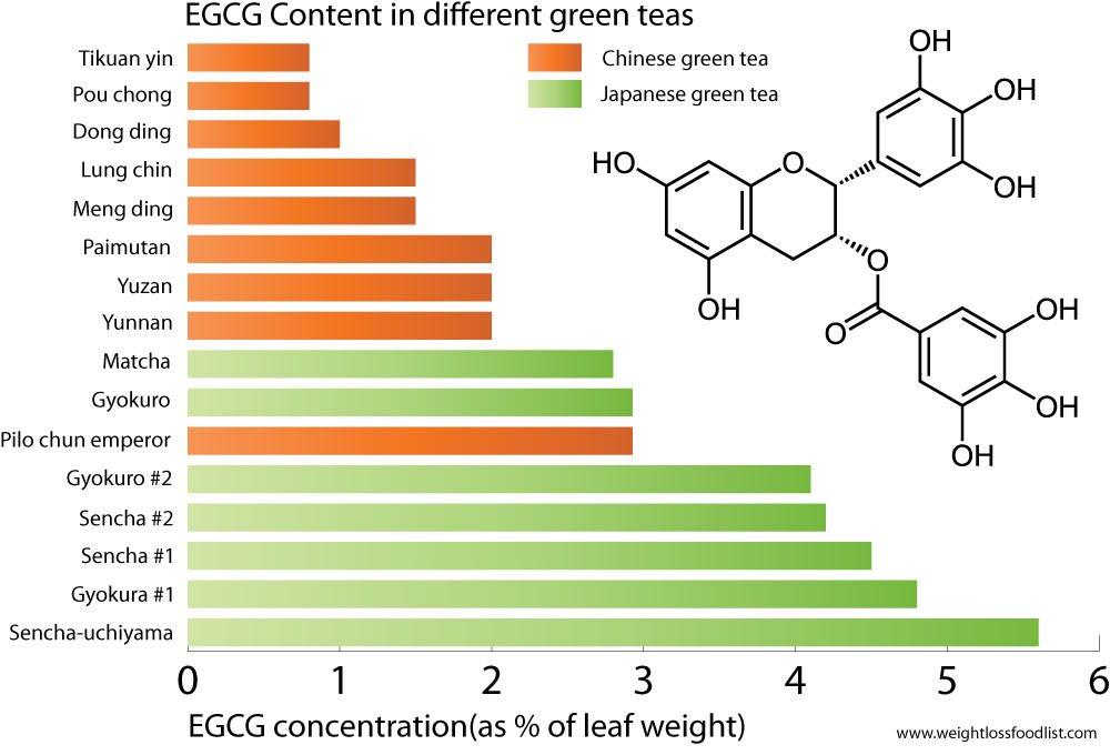 Содержание EGCG в разном чае