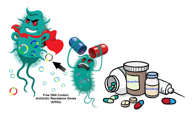 Подсластители увеличивают устойчивость бактерий к антибиотикам