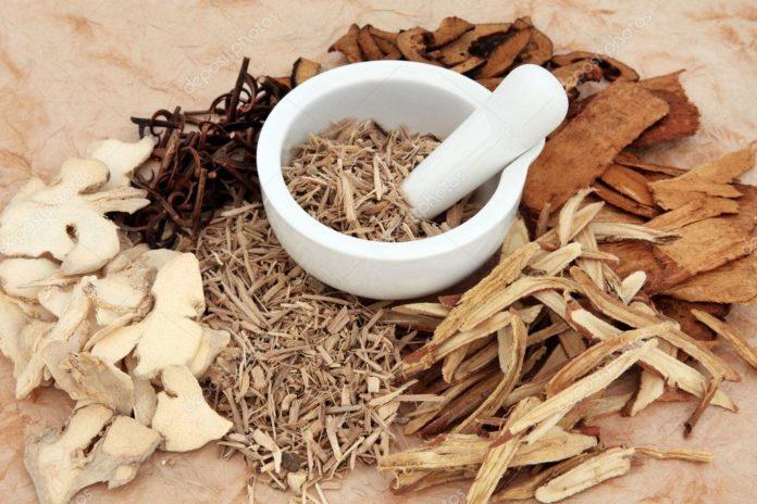 Астрагал и его полезные свойства для здоровья
