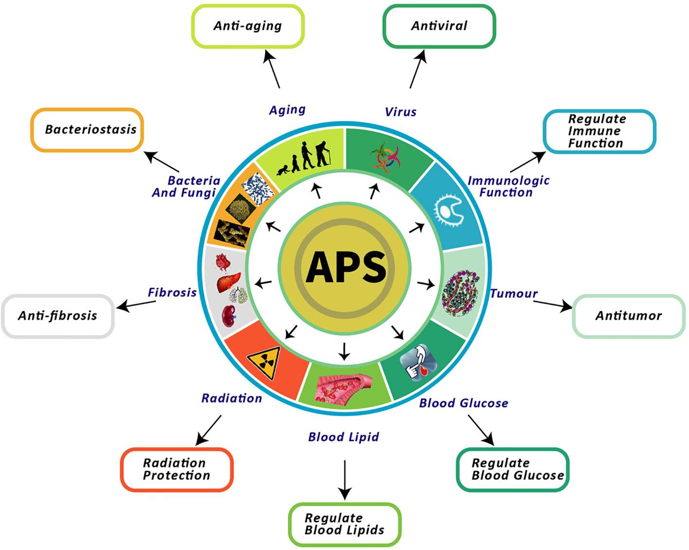 Полисахариды астрагала и их полезные свойства