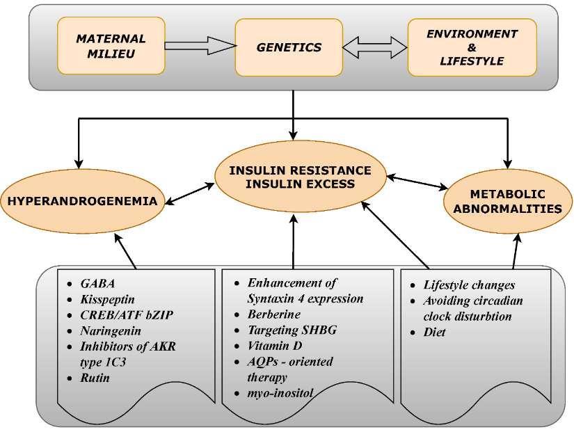 Берберин при лечении синдрома поликистозных яичников