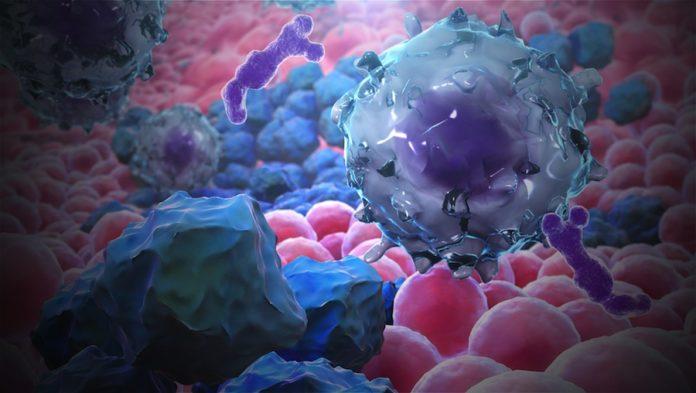 Мутации в гене Dnmt3a вредна
