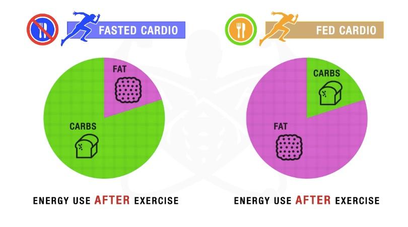 Тренировка натощак способствует сжиганию углеводов в течение дня