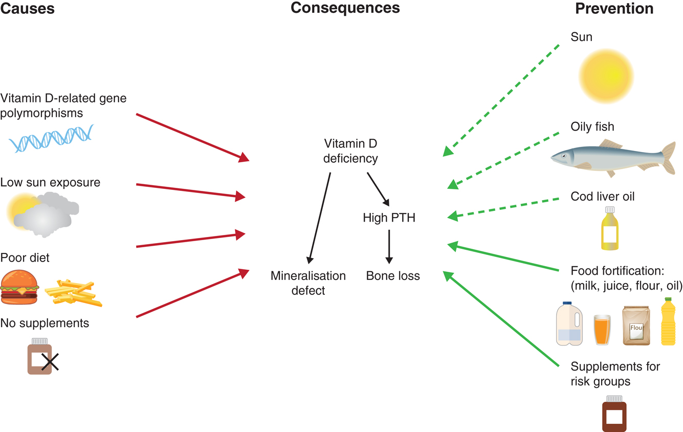 Что оказывает влияние на уровень витамина D